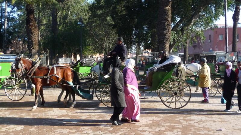 08/02/2009 Marrakech