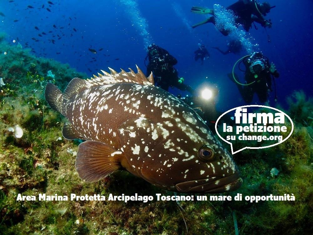 Il presidente di Legambiente chiede al ministro dell'ambiente di riaprire l'iter per istituire l'Area marina protetta dell'Arcipelago Toscano