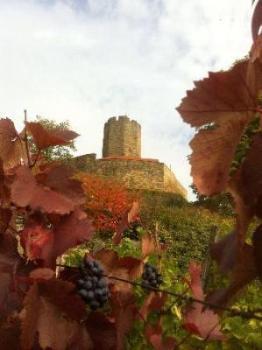 November: Wanderung/ Christoph H.