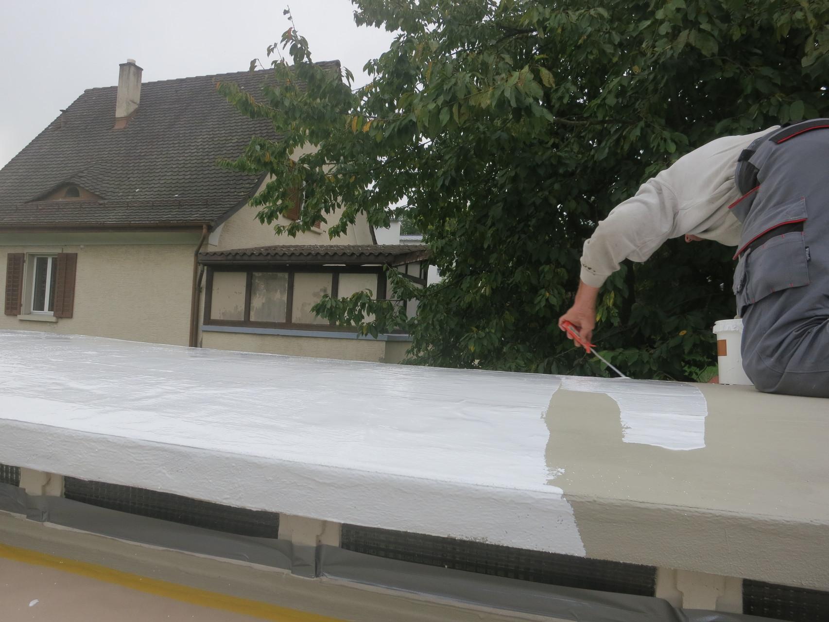 Deck- und Schutzanstrich RAL 9010