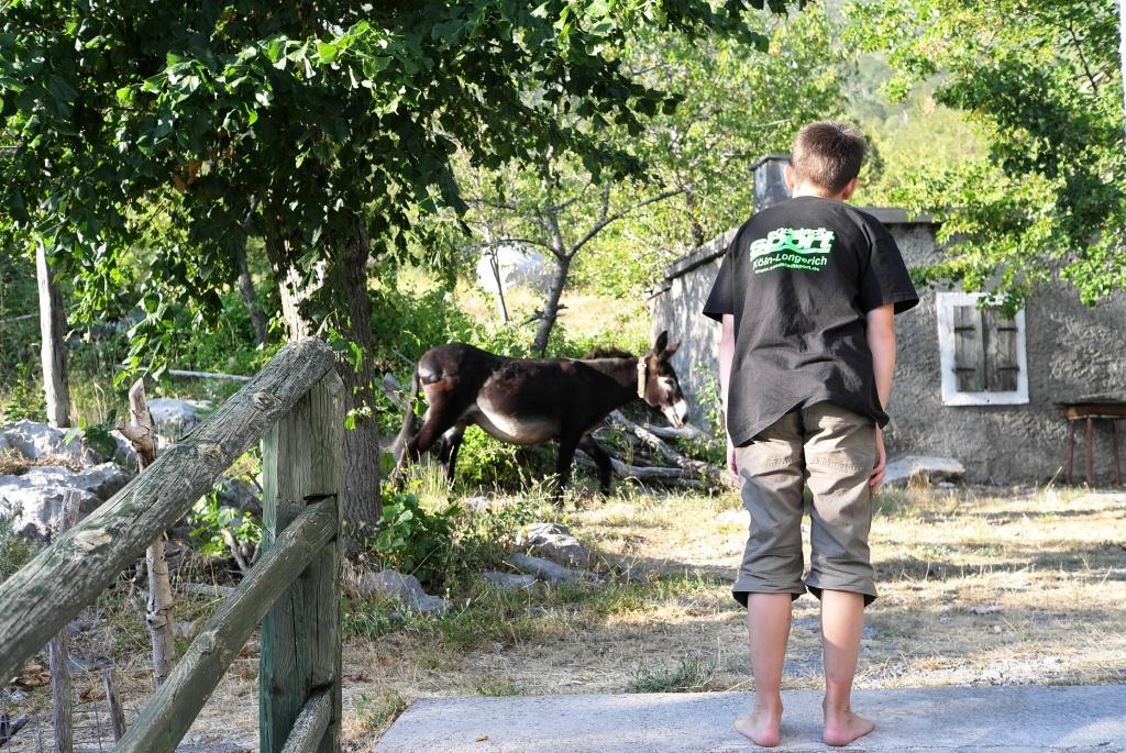 """Zwei """"Esel"""" einer trägt die Last. Kein PKW kommt in den Nationalpark."""