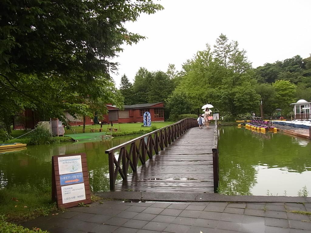 この橋を渡ると ペイネ美術館。