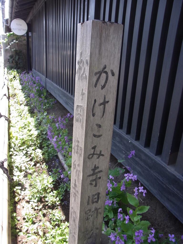 かけこみ寺・東慶寺の前を通って