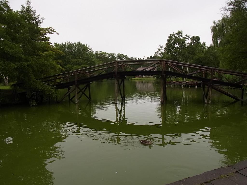 木の橋と中洲がいいかんじ。