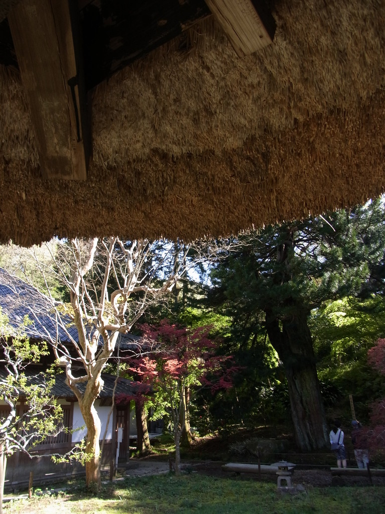書院のかやぶき屋根