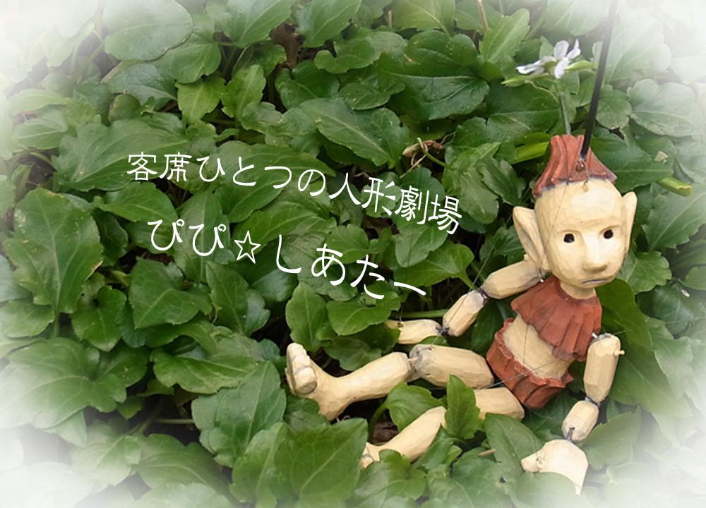 客席ひとつの人形劇場 ぴぴ☆しあたー