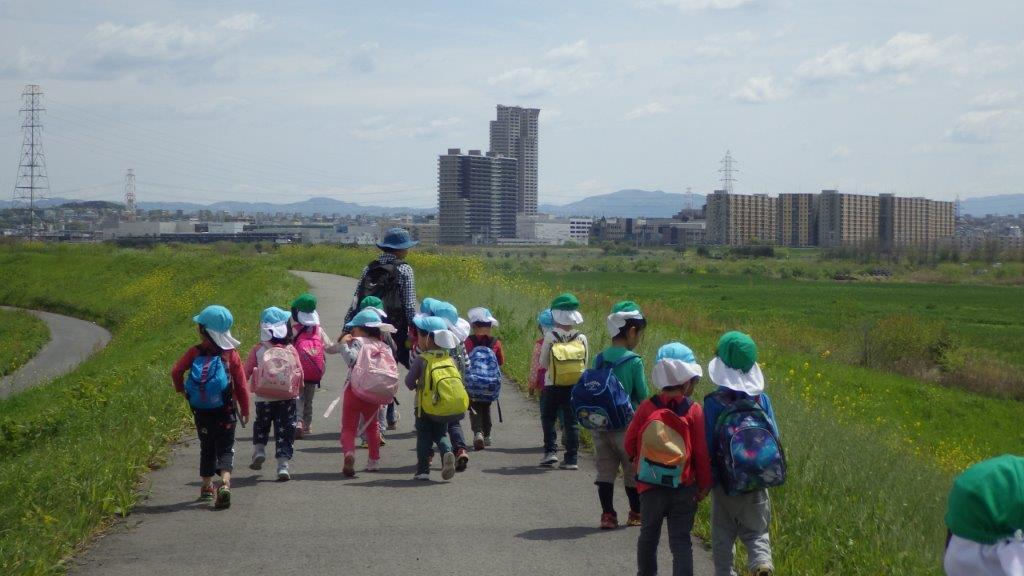 「春の遠足」4・5歳は、淀川堤防を歩いて春日神社まで行きました。春の自然を感じながらお弁当を楽しみに歩く子どもたちでした。