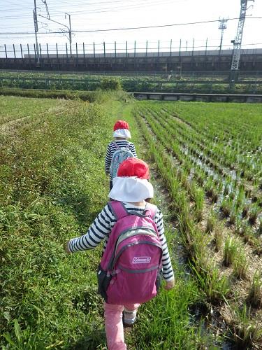 秋の遠足「リュックを背負った子ども達はいつもより気合を入れて歩いてしましたよ☆(3歳児)」