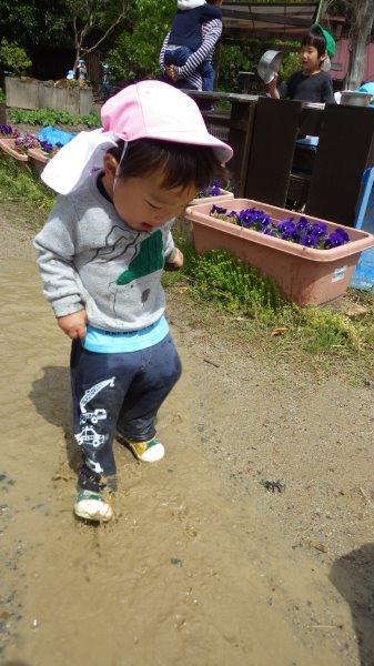 うさぎぐみ(1歳児)「雨上がりのおたのしみ☆」