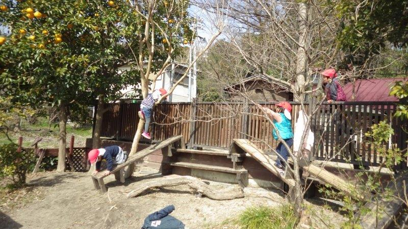 【グランド】ベンチを大きい子がいろんな形に組み立ててアスレチックのできあがり。よじ登ったり滑ったり。小さい子も体の使い方が上手になってきました。