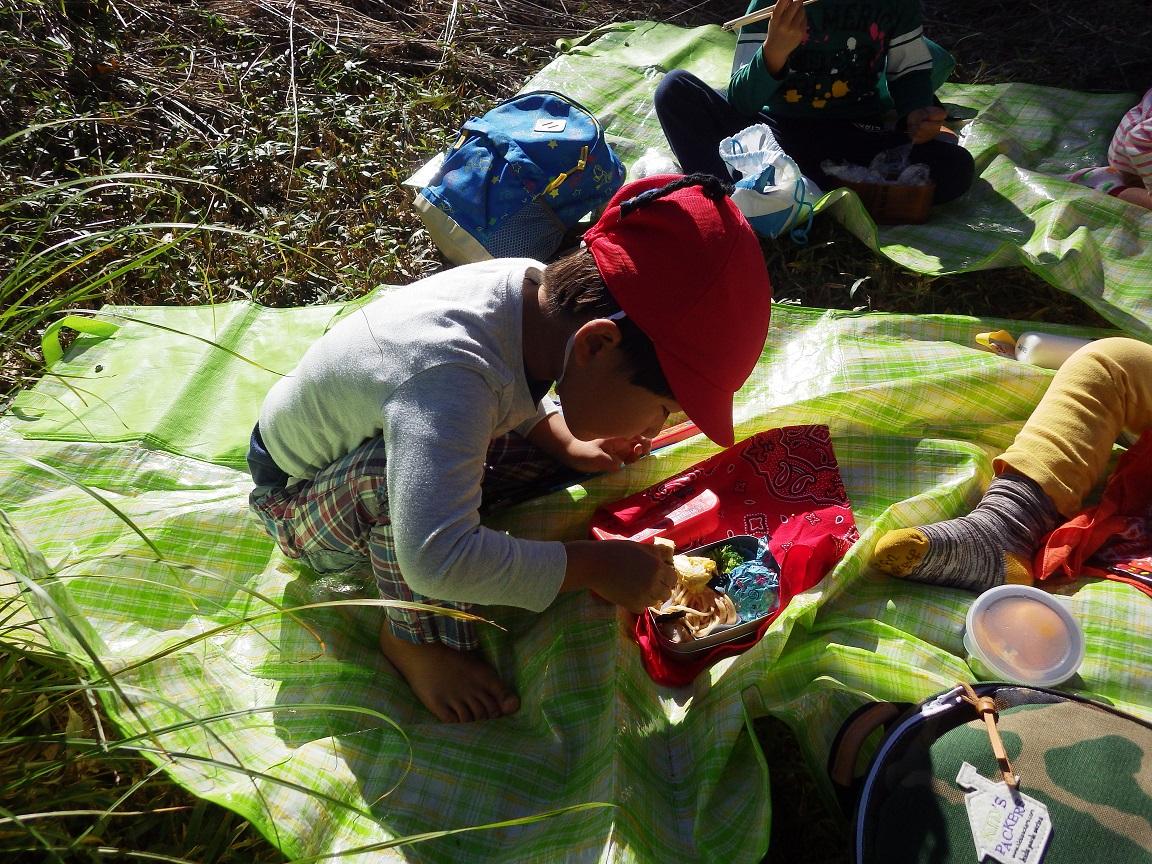 「秋の遠足 3歳児」楽しみにしていた遠足!お弁当が入ったリュックをしょった子どもたちはいつもより誇らしげに山へ登っていました。自然の中で食べるおうちの人に作ってもらったお弁当を食べる表情は、本当に幸せそう☆