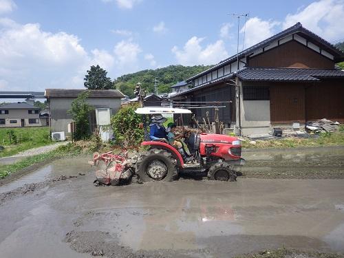 近所の農家さんに田植えの見学とトラクターにのせてもらいました!子どもたちも大興奮☆