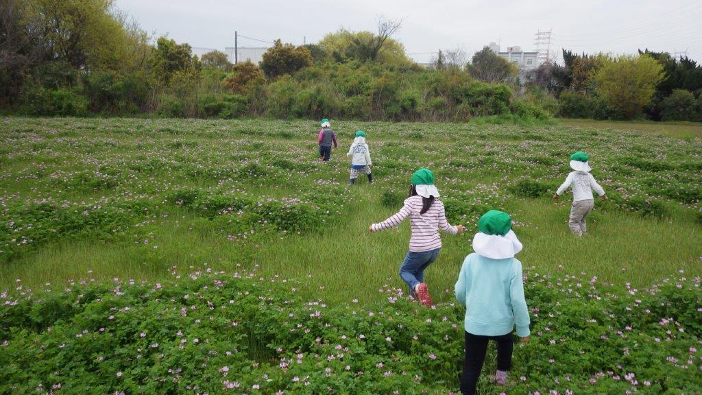 「れんげ摘み」神社近くに咲いていたたくさんのれんげ。中に入って摘んでは花束にしたり、帽子に飾ったり。「れんげプール!」と友だちと寝転がってあそぶ子もいましたよ。