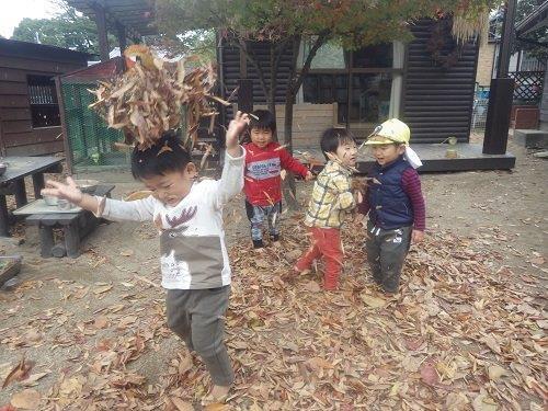 <2歳児>落ち葉をいっぱい集めて落ち葉のお山にダイブしたり、おめでと~!とぱらぱら撒いてあそんだり。落ち葉のとってもいいにおいがします。