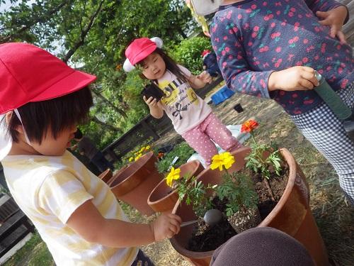 「これってなんてお花?」「どうやって育つ?」自分の手でお花を植えることで興味が広がっていきます。