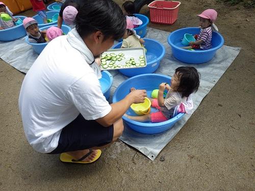 ピッコロで採れたきゅうりを塩もみにしてもらって塩分補給。給食だと食べられない子もお外だと食べられちゃうんです!