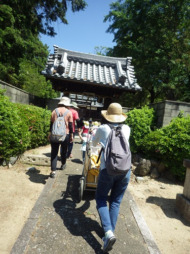 近所の畑山神社にお散歩に行きました。神社の中は涼しくて子どもたちも大好き☆