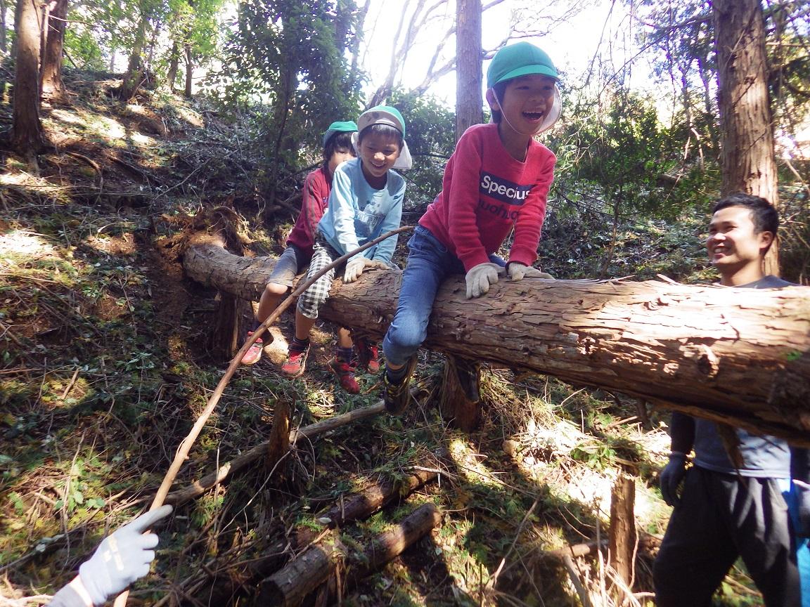 「秋の遠足 4・5歳児」頂上についておいしいお弁当を食べた後はLet's山あそび☆子どもたちはどんな斜面もどんどん登り、木渡りをしたいり弦でターザンになったり、山は子どものあそびの宝庫です!