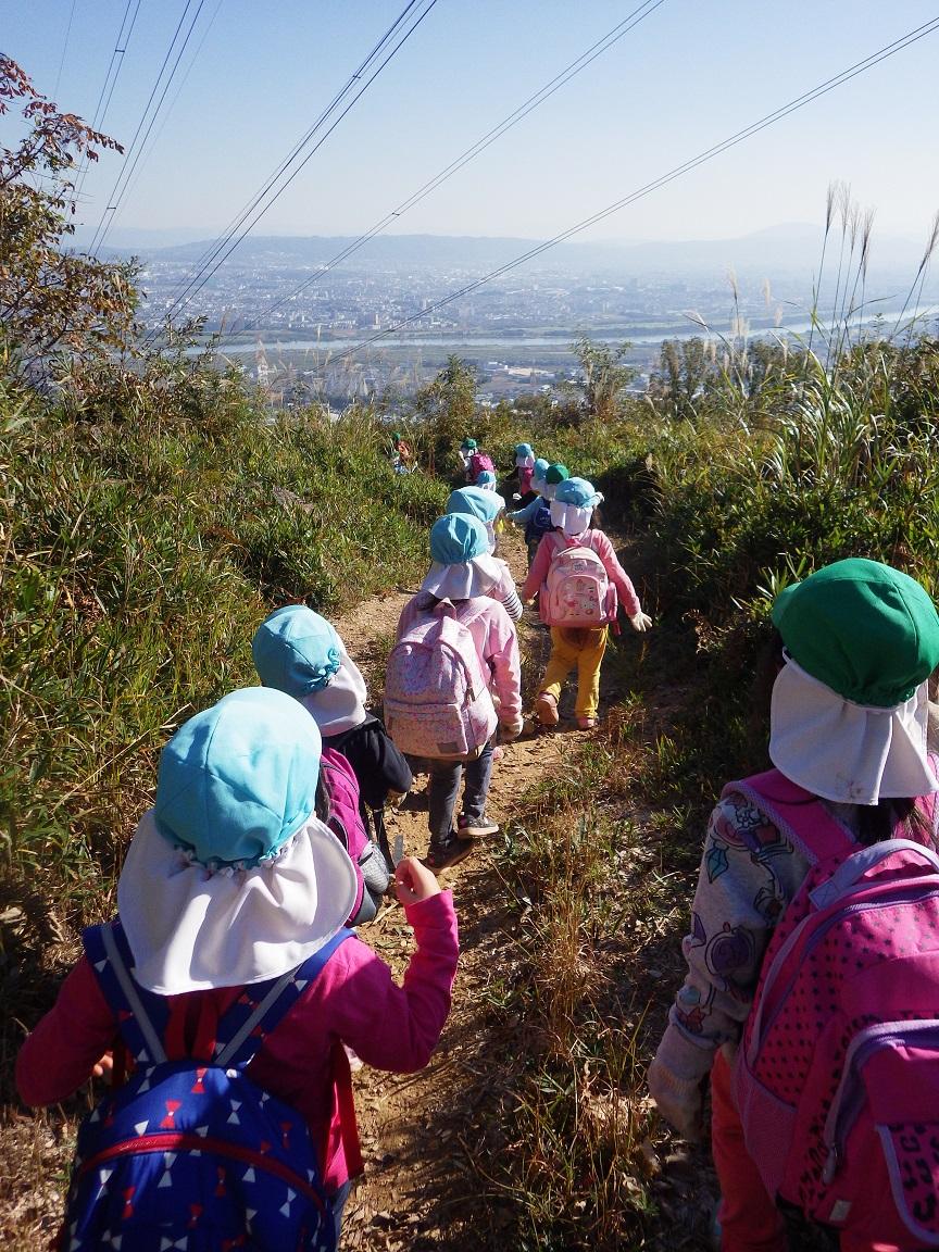 「秋の遠足 4・5歳児」梶原山の頂上目指して出発!そらぐみ(4歳児)は始めて頂上まで登りました。夏を乗り越えて一段と体力がついた様子で、立派に登りきっていた子どもたちです。