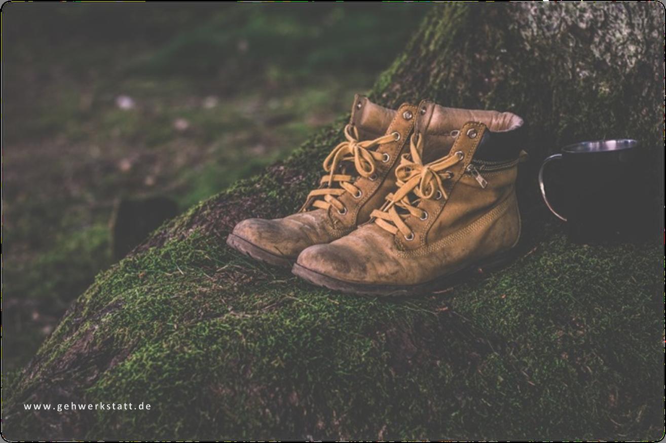 Die richtige Schuh- und Lederpflege