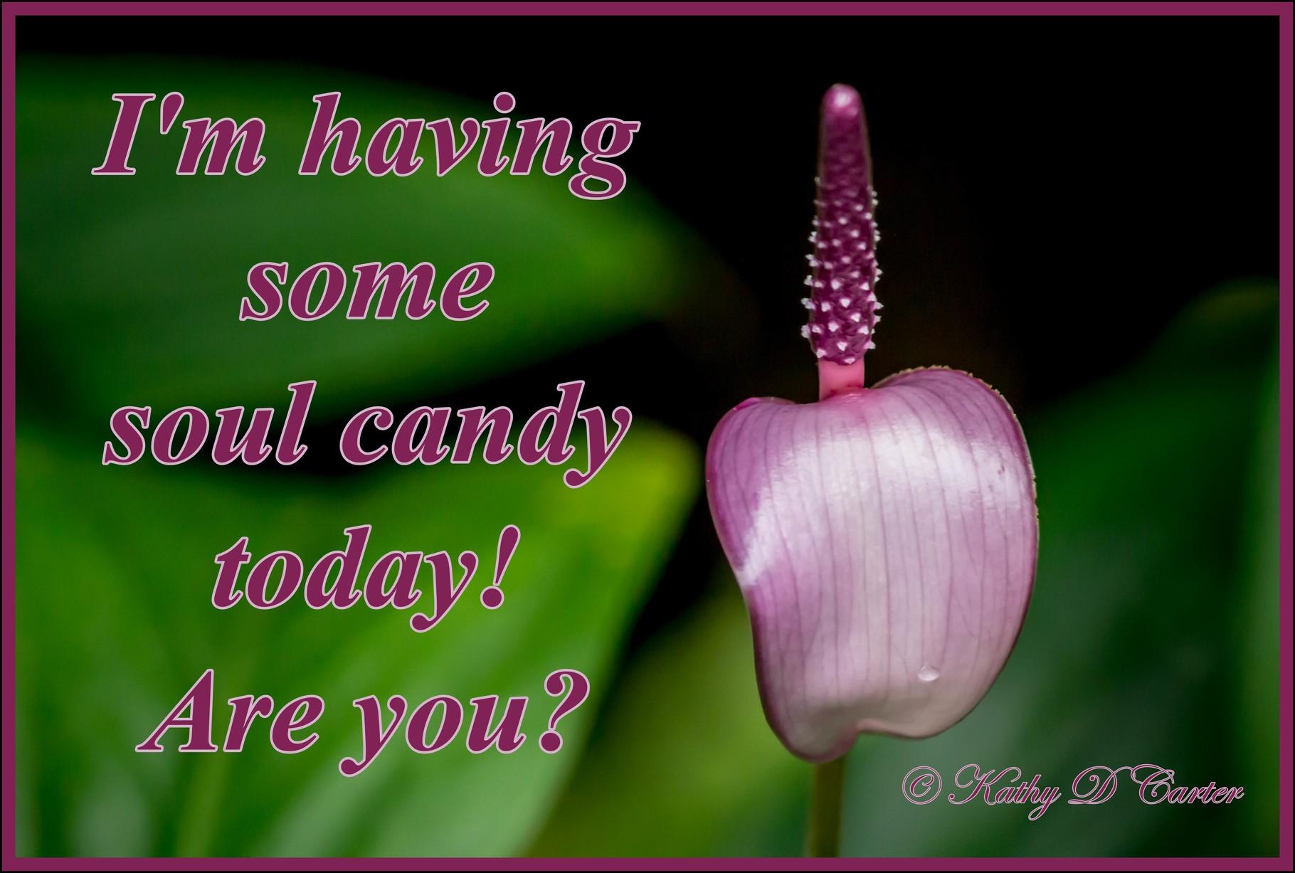 Enjoy some Soul Candy!