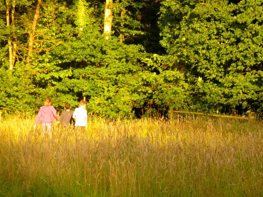 Wege in die Natur - Jugendcamp Wildnisschule Habichtswald