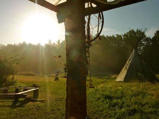 Wildniscamp auf Hof Grafel