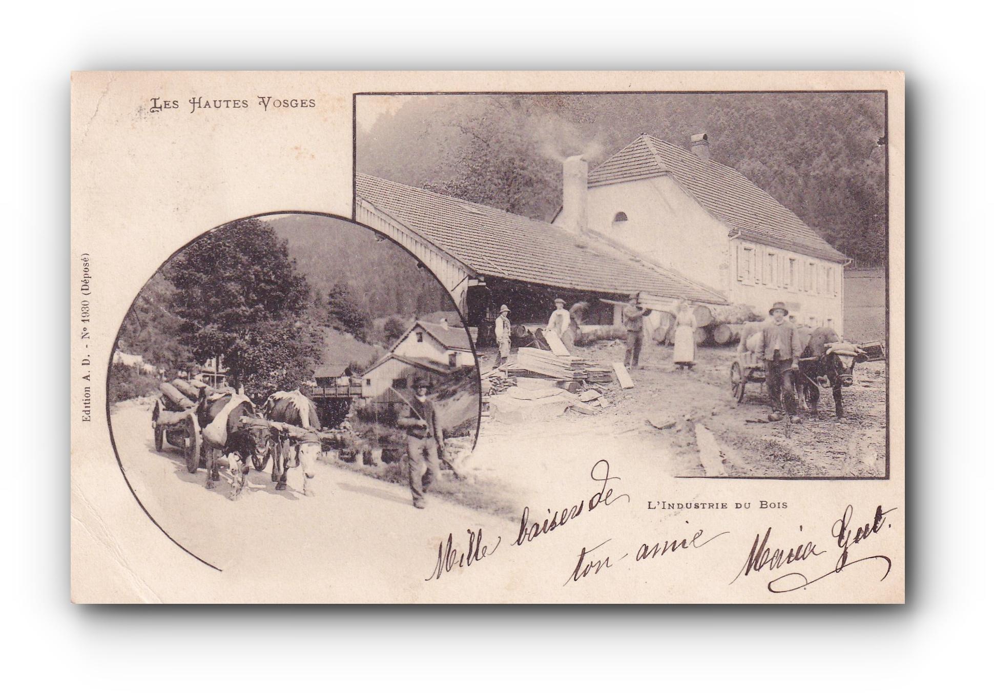 Les hautes Voges - 17.05.1903 -  Die Hochvogesen - The High Voges