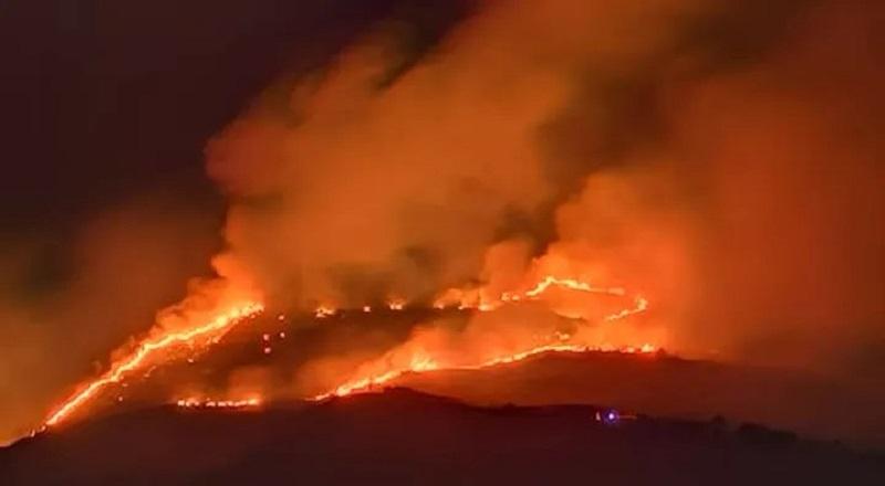 Ciociaria Devastata dagli Incendi