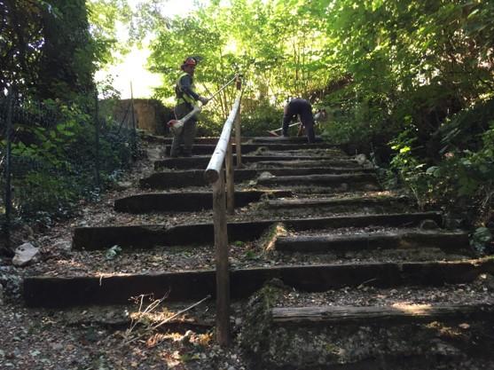 Rénovation des accès (escaliers bois)
