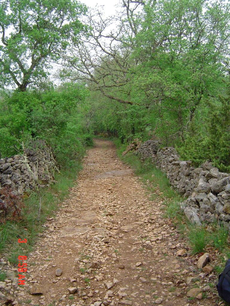 Nos Chemins