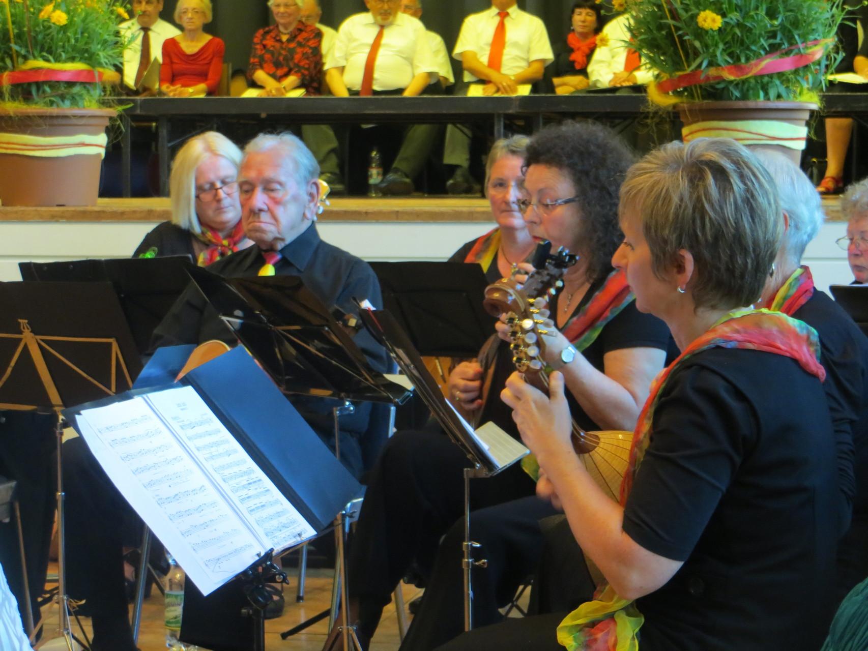 Benefiz-Konzert im Uhlandbau - Mandolinenorchester