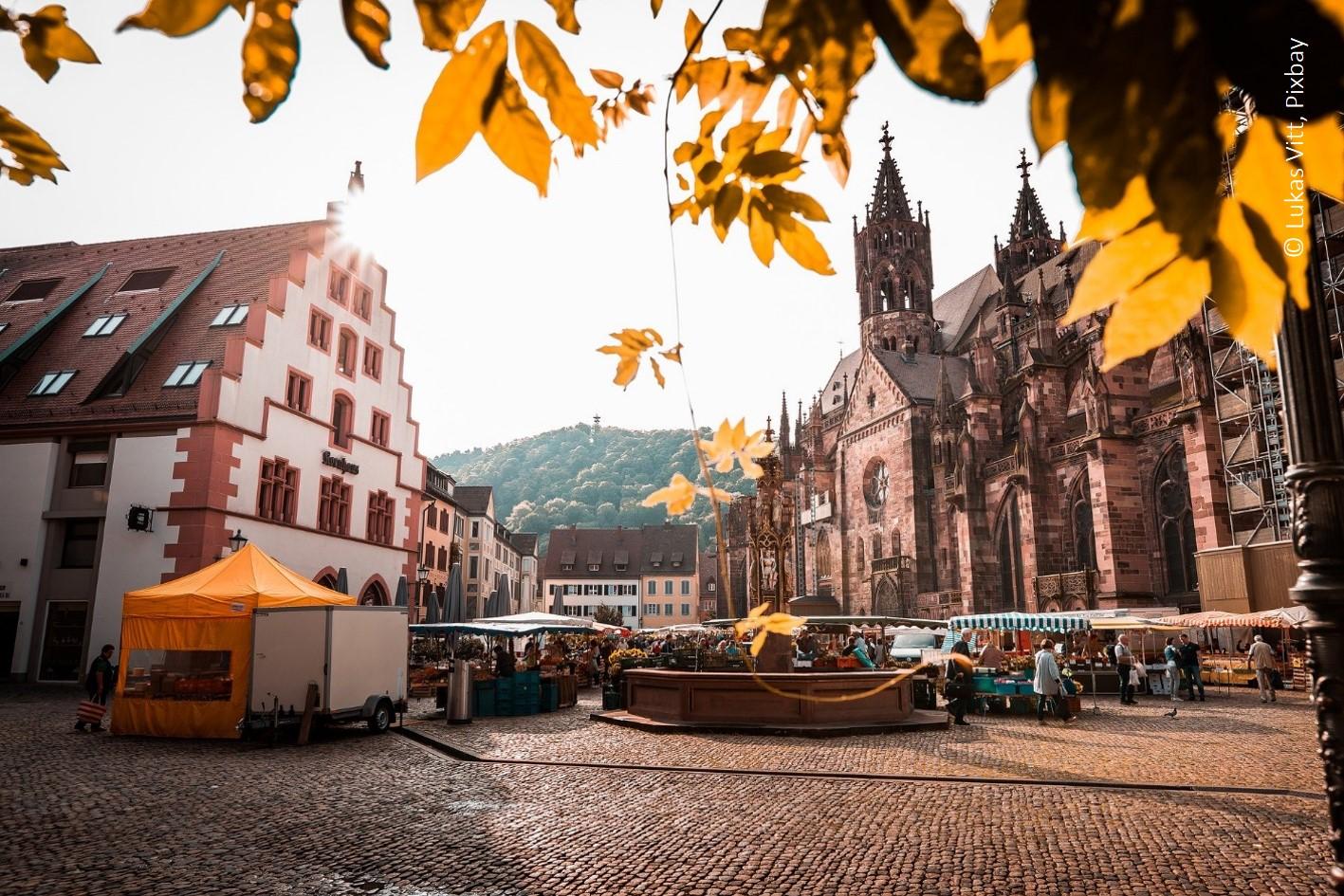 Auf dem Markt am Freiburger Münster