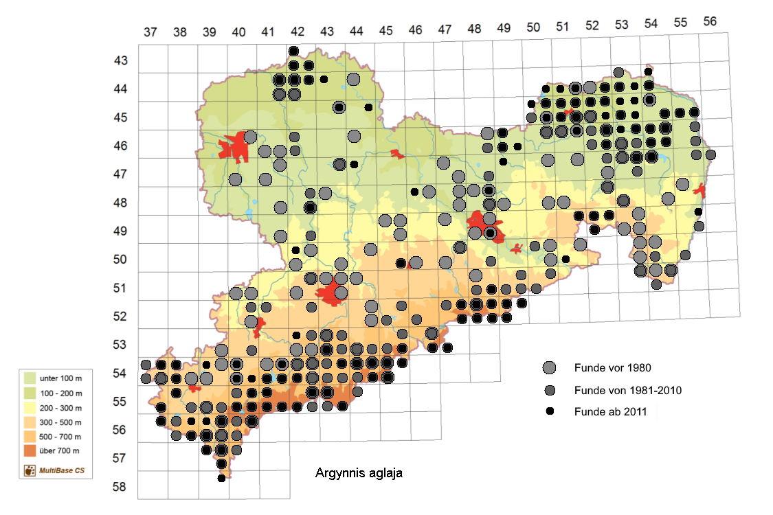Vorkommen von Argynnis aglaja in Sachsen ab 2007