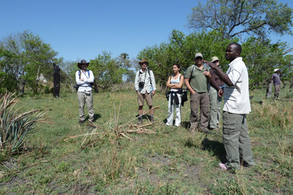Buschwalk in Botswana
