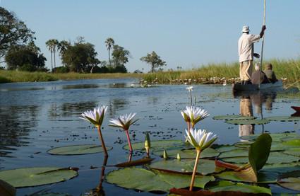 Mokoro-Fahrt auf dem Okavango
