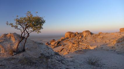 zum Sonnenaufgang im Namib Naukluft Park
