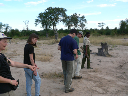 Beim Guided Walk in Zimbabwe