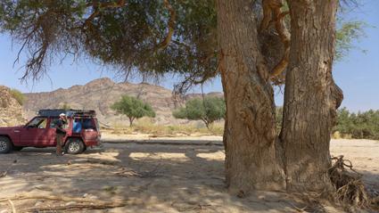 im Tal des Hoanib