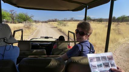 Fahrt zur Leopardenfütterung in Düsternbrook