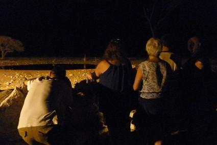 abends am Wasserloch