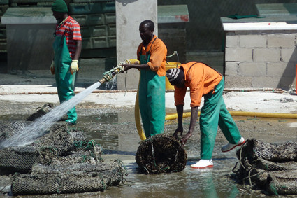 Fischereiarbeiter in Lüderitz
