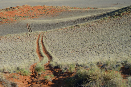 Fahrweg im Tsondab Valley Scenic Reserve