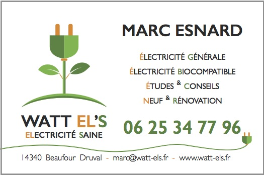 Cartes de visite  - Logo&Co Communication Cancale