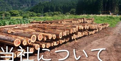 岩佐木材 有限会社について