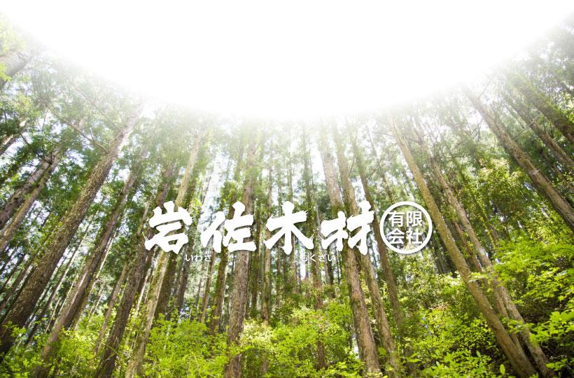 架線集材による林業、岩佐木材㈲【新潟県村上市山北】