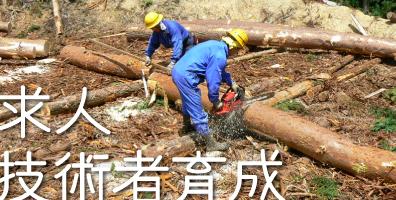 林業求人・林業技術者育成【岩佐木材 有限会社】
