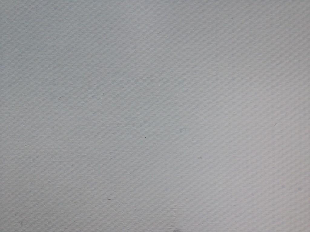 131 Leinen stark, Doppelfaden, vierfach grundiert, Universalgrund, 216 cm