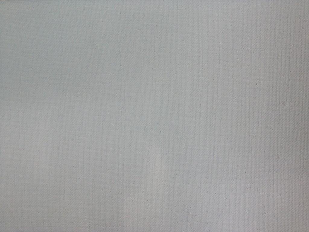 113 Portraitleinen fein, zweifach grundiert, Ölgrund, 216 cm