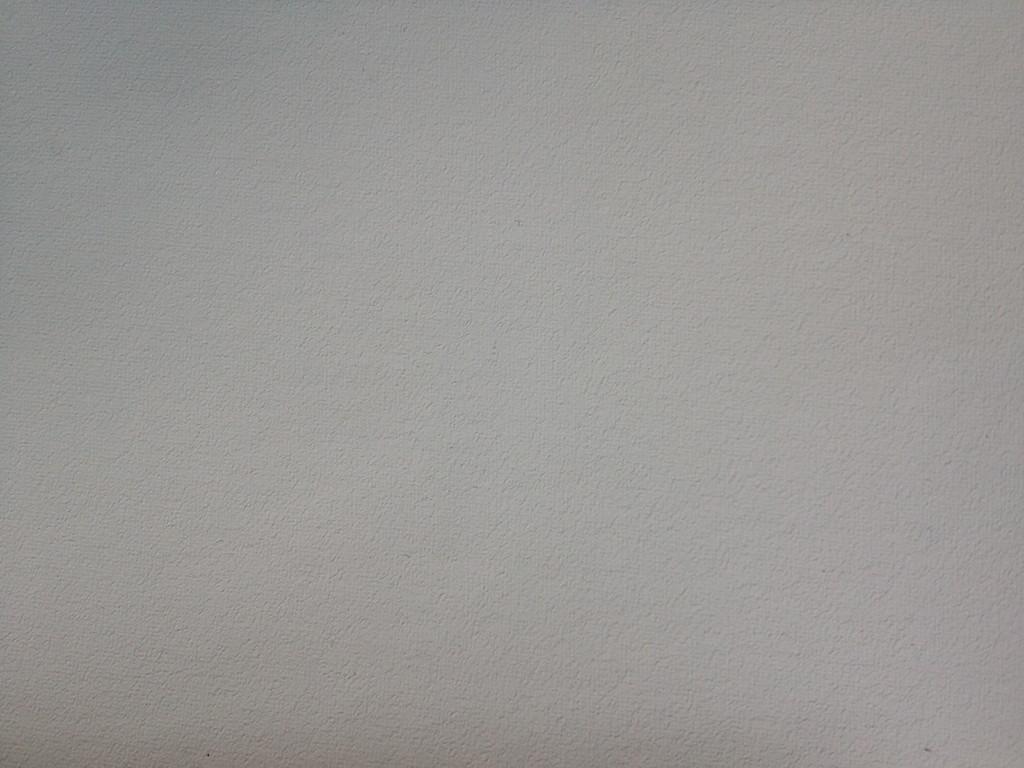 205 Polyester, vierfach grundiert, Universalgrund, 270 cm
